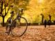 Az őszi kerékpározás